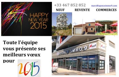 VOEUX 2015.jpg